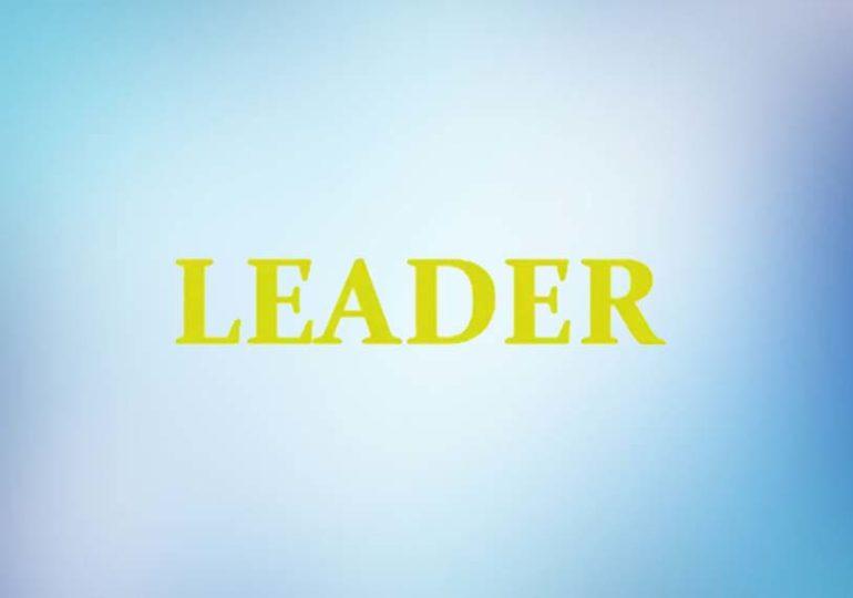 Стоит ли инвестировать с Leader Money: обзор брокера