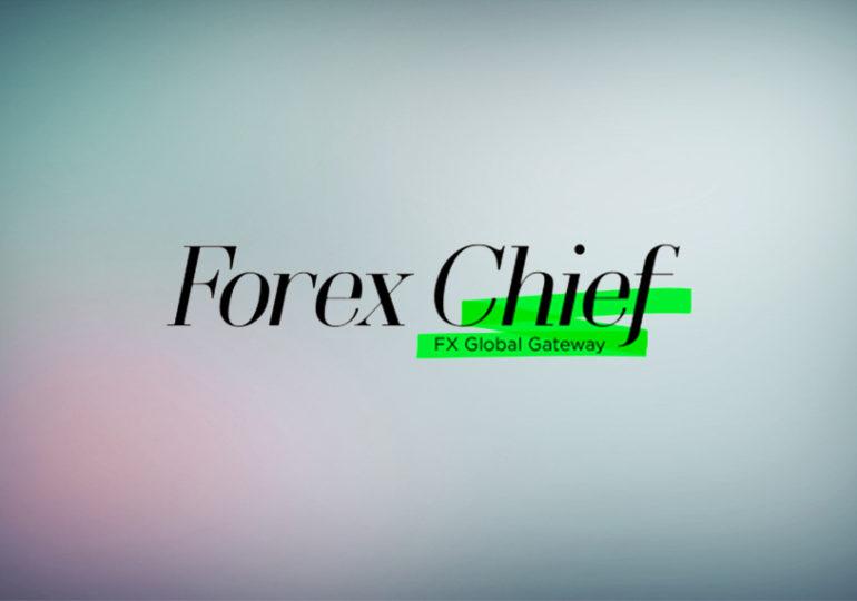 Правда о брокере ForexChief: детальный обзор компании и отзывы трейдеров