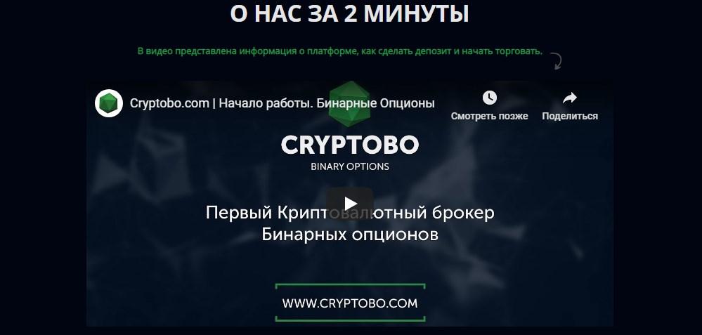 Детальный обзор криптомошенника Cryptobo, реальные отзывы